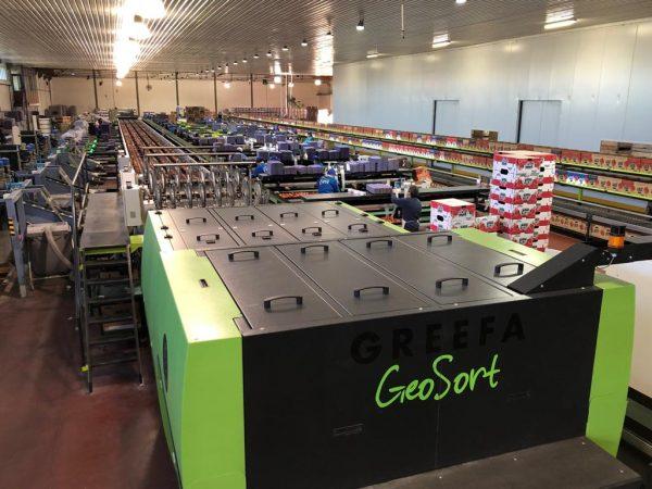 GeoSort-Greefa